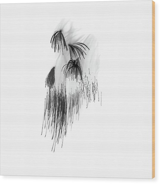 Shades Of Grey Collection Set 04 Wood Print