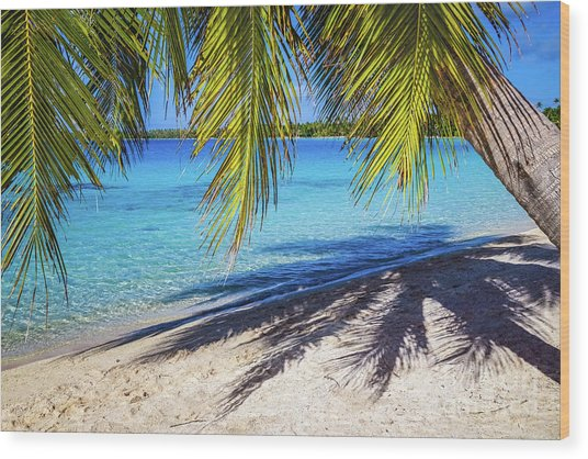 Shadows On The Beach, Takapoto, Tuamotu, French Polynesia Wood Print