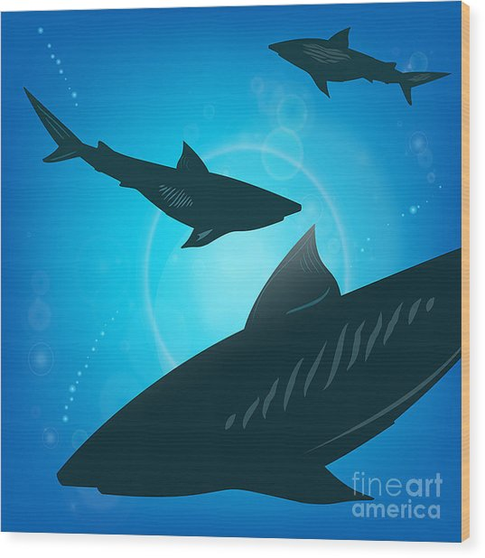 Sharks Under Water. Fish In Ocean Wood Print