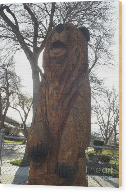 Sharon's Bear  Wood Print