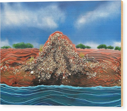 Shell Mound Wood Print