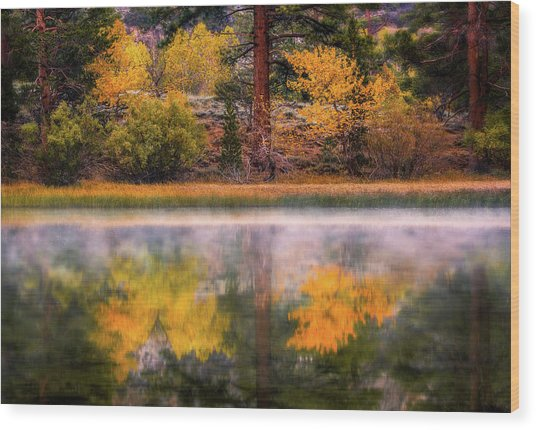 Silver Lake - Breath Of Air Wood Print