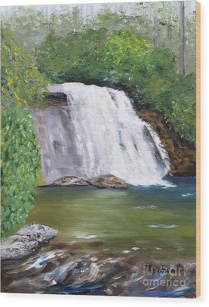 Silver Run Falls Wood Print