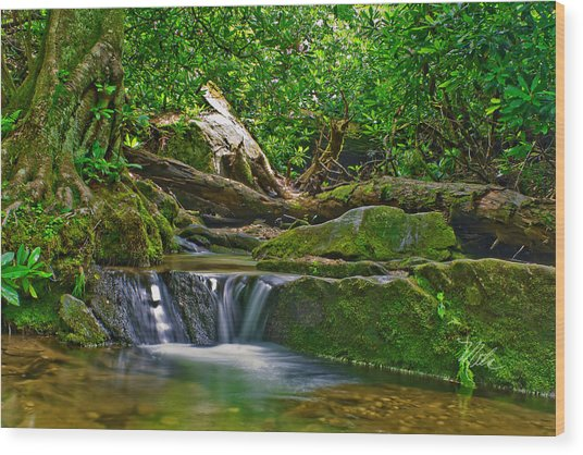 Sims Creek Waterfall Wood Print