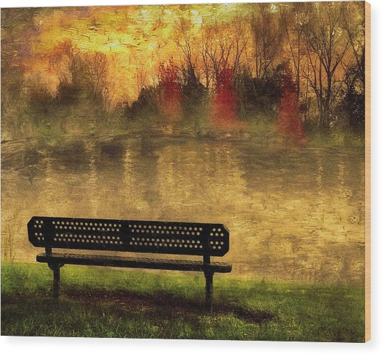 Sit And Admire Wood Print