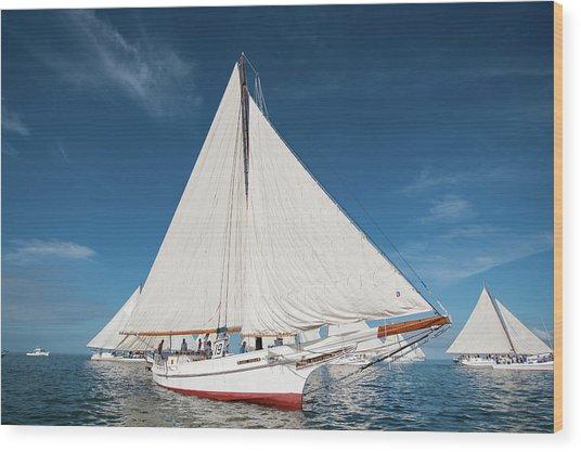 Skipjack Rosie Parks Wood Print