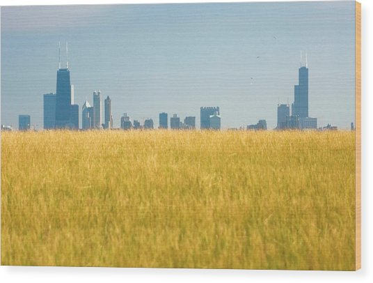 Skyscrapers Arising From Grass Wood Print by By Ken Ilio