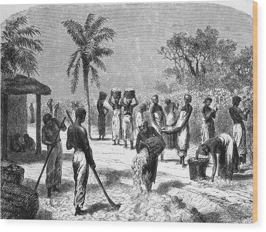 Slaves On The Plantation Wood Print by Hulton Archive
