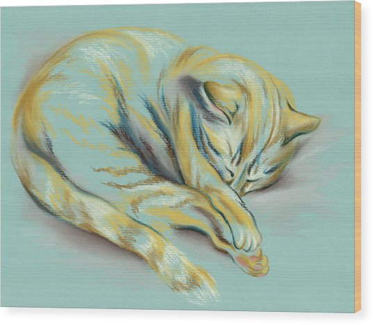 Sleeping Tabby Kitten Wood Print
