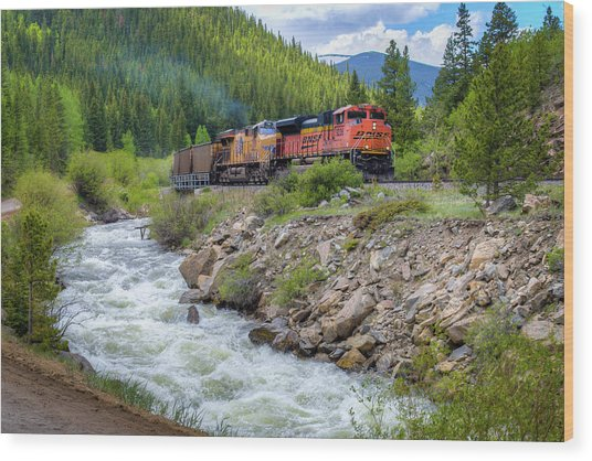 Slow Train Coming Wood Print by G Wigler