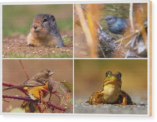 Small Animal Collage Wood Print