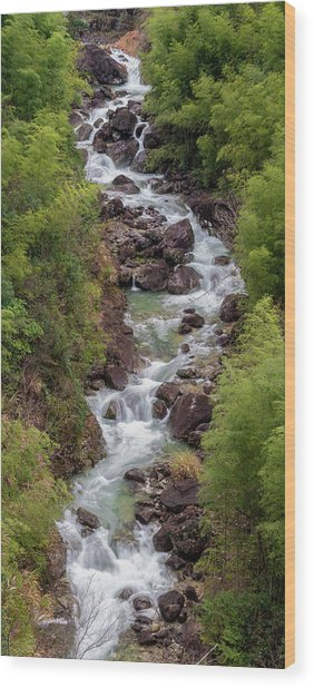 Wood Print featuring the photograph Small Cascade 1x2 Vertical by William Dickman