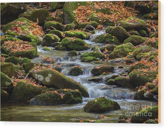 Smokey Mountain Cascades Wood Print