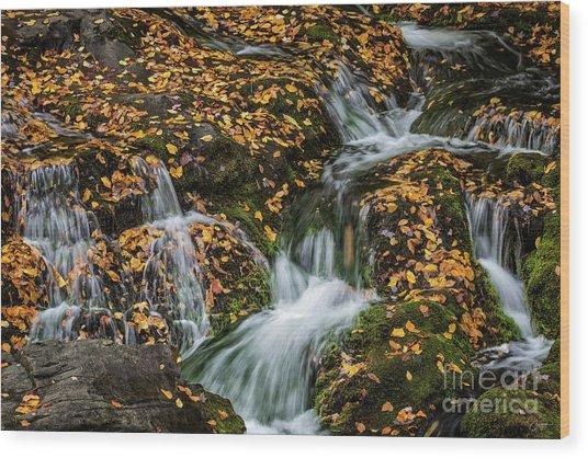 Smokey Mountain Falls Wood Print