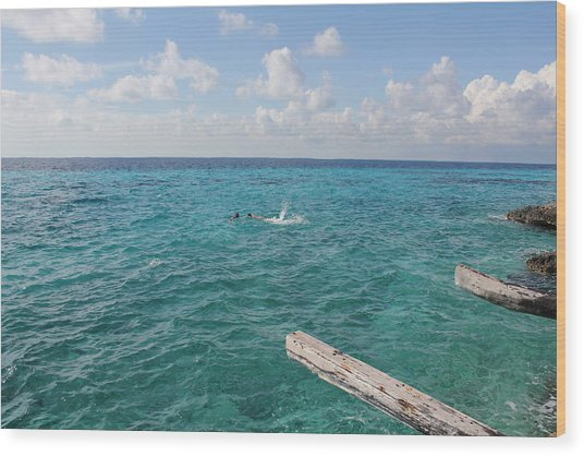 Wood Print featuring the photograph Snorkeling by Ruth Kamenev