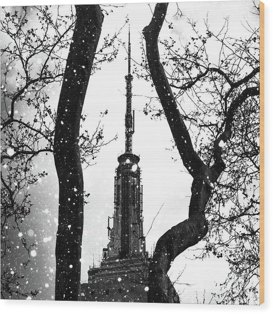 Snow Collection Set 07 Wood Print