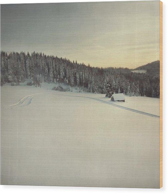 Snow Field Wood Print by Tom