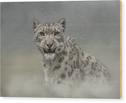 Snow Ghost Wood Print