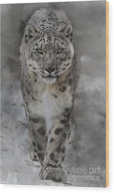 Wood Print featuring the photograph Snow Leopard II by Brad Allen Fine Art