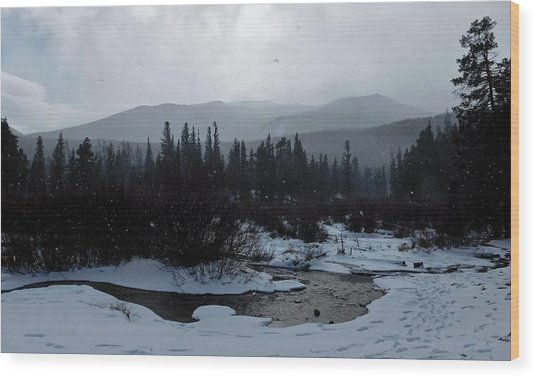 Wood Print featuring the photograph Snow Squall by Dan Miller