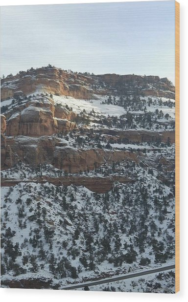 Snow Steps Wood Print