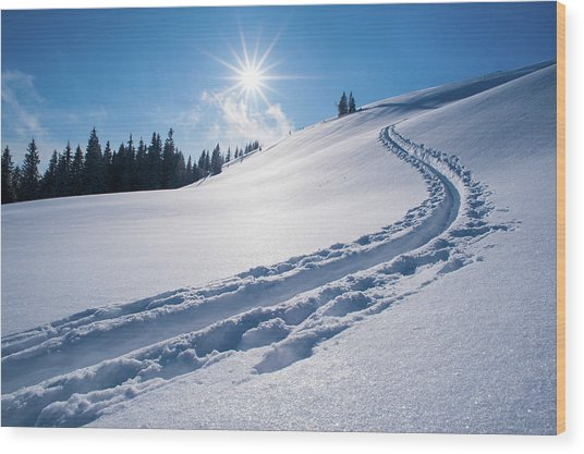 Snow Track Of A Backcountry Skier In Wood Print by Olaf Broders