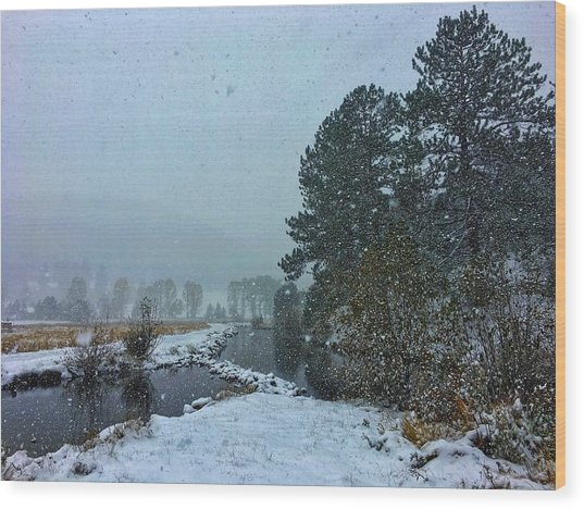 Wood Print featuring the photograph Snowstorm At The Lake by Dan Miller