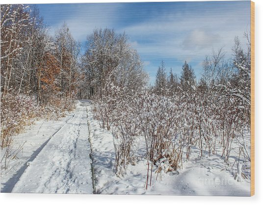 Snowy Boardwalk Wood Print