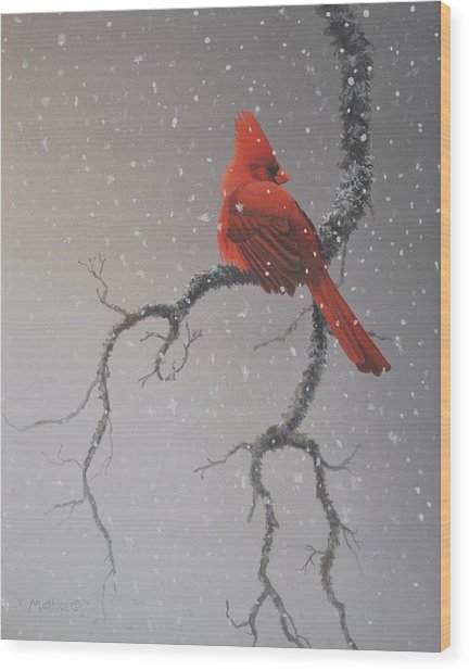 Snowy Perch Wood Print