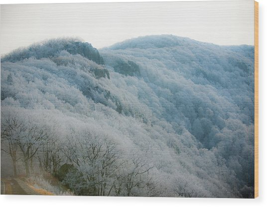 Soft Hoarfrost Wood Print