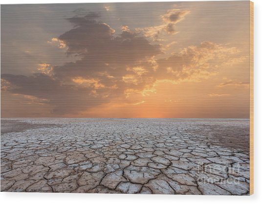 Soil Drought Cracked Landscape Sunset Wood Print