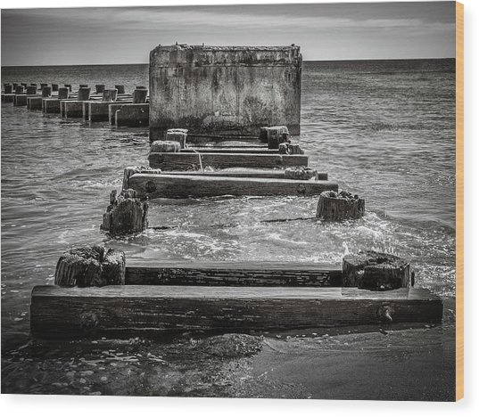 Wood Print featuring the photograph Something In The Water by Steve Stanger