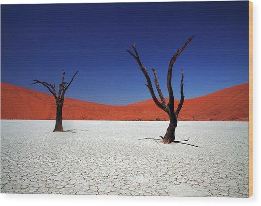 Sossusvlei In Namib Desert, Namibia Wood Print