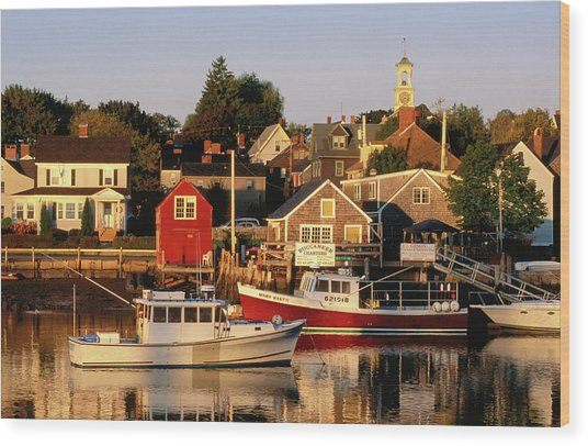 South End, Harbor And Houses Wood Print