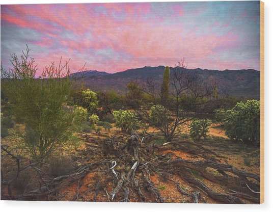 Southwest Day's End Wood Print
