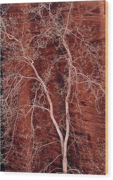 Southwest Texture Wood Print by Leland D Howard