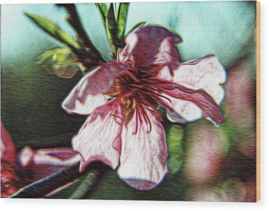 Spellbound Wood Print