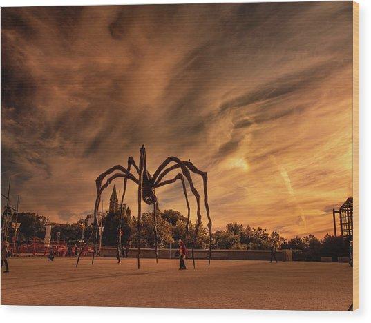 Spider Maman - Ottawa Wood Print