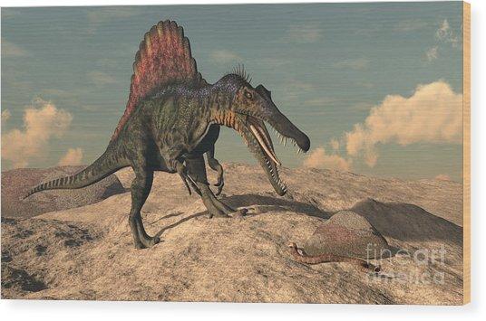 Spinosaurus Dinosaur Hunting A Snake - Wood Print