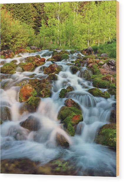 Spring Cascade Wood Print by Leland D Howard