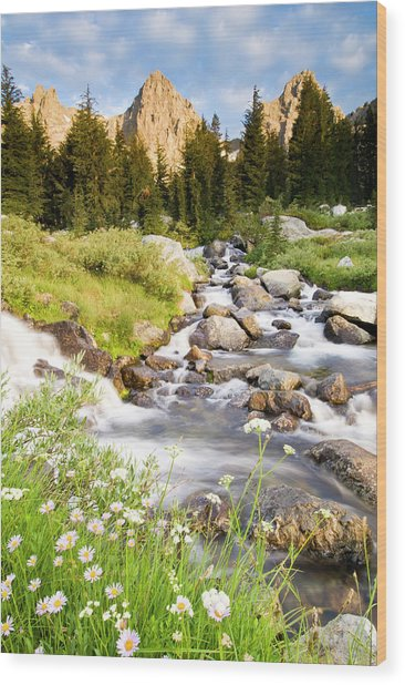 Spring Flowers And Flowing Water Below Wood Print by Josh Miller Photography