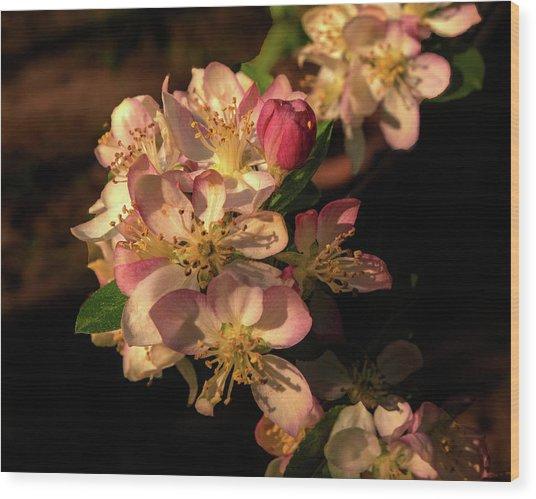 Spring Garland Wood Print