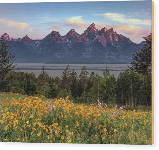 Spring In The Tetons Wood Print by Leland D Howard