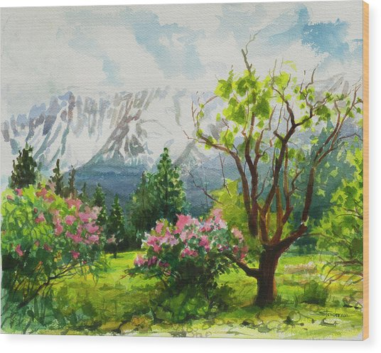 Spring In The Wallowas Wood Print