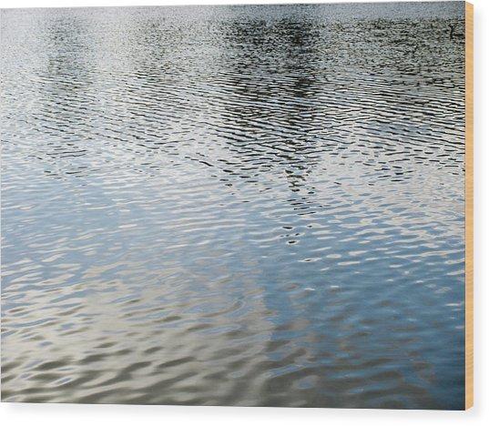 Spring Lake_3931_12 Wood Print