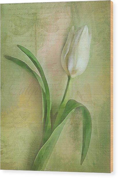 Spring Tulip Montage Wood Print
