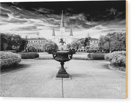 St. Louis Cathedral Dimensions New Orleans Wood Print
