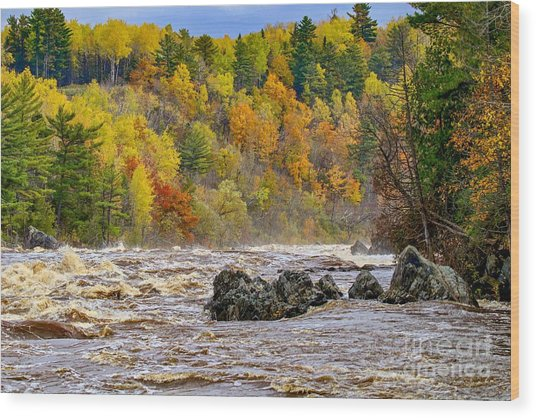St. Louis River At Jay Cooke Wood Print