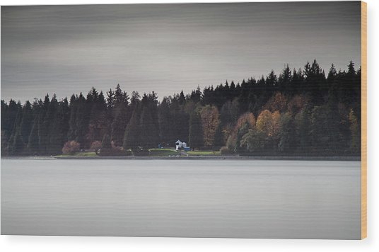 Stanley Park Vancouver Wood Print
