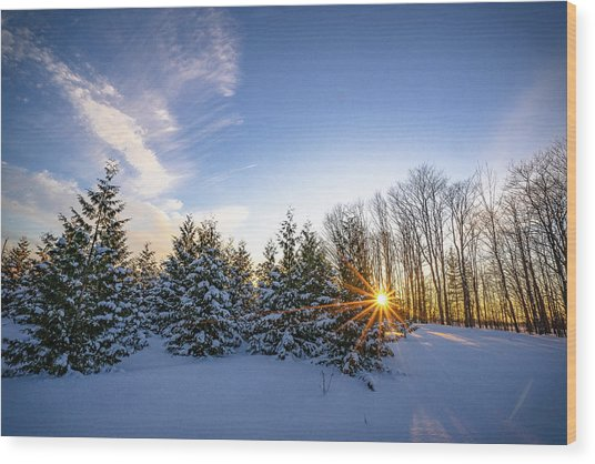 Star Bright Wood Print